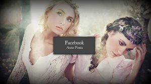facebook auto post blog